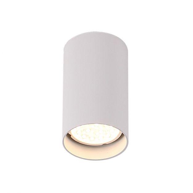 Maxlight Pet Round - opbouwspot - 10 cm - wit